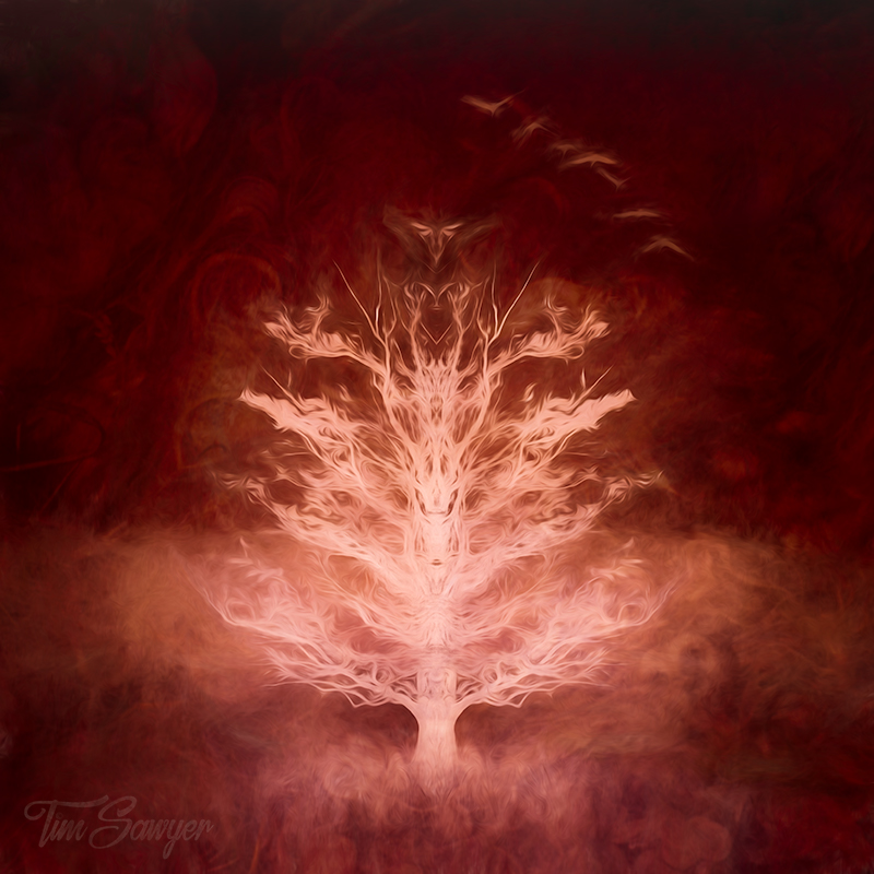 A Tree Of Fire